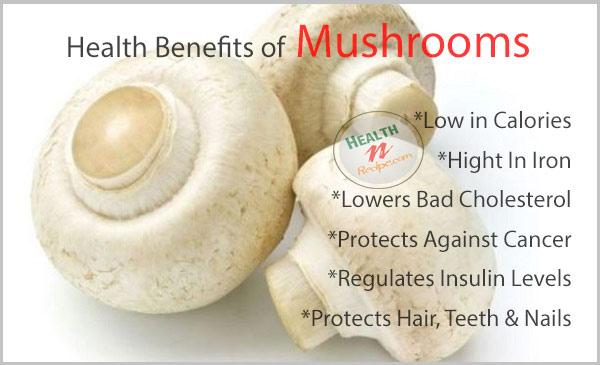 Mushrooms Health Benefits
