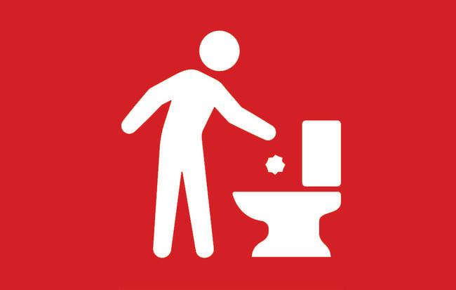 things never flush toilet